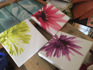 3 small canvasses