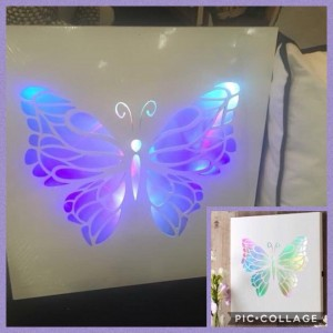 Butterfly light up picture