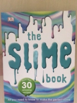 Slime dk find out  book