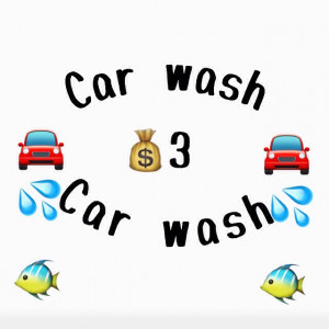 Car wash me and my freind want to eat money in the 6 week Holliday £3 for out side £6 for both