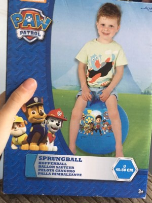 Children's paw patrol hopperball