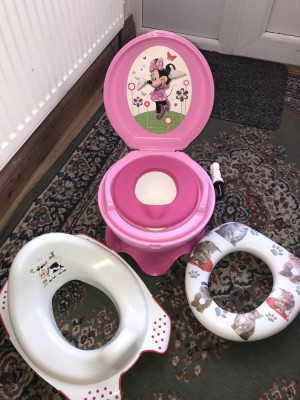 Toilet seat and potty train