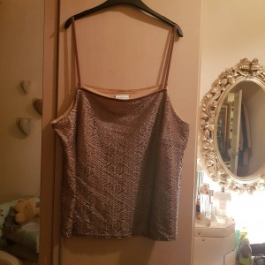 Essence Pretty Beige Lace Top with Lining Size 22/24