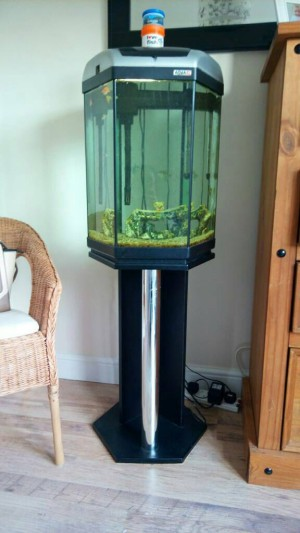 Tropical fish tank and stand