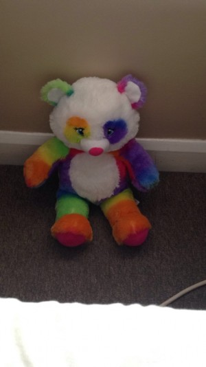 Brand new build a bear teddy