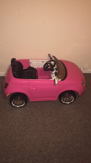 Kids rid on car needs a charger £30