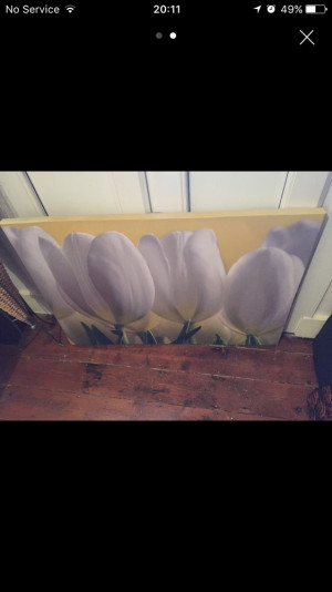 Tulip wall art canvas