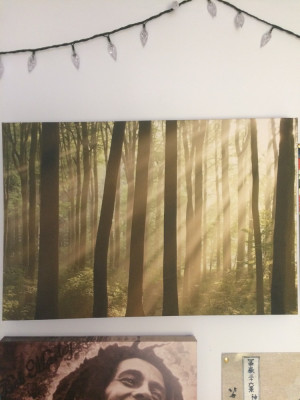 Woodland Canvas Print [23.5in by 15.5in]