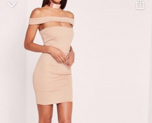Rubbed cut out panel Bardot bodycon dress