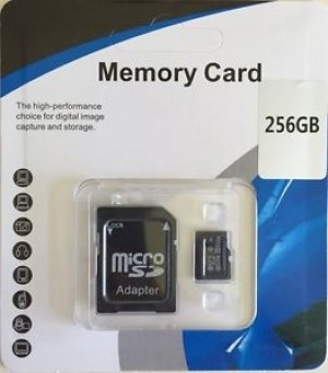256GB SD MEMORY CARD WITH ADAPTER