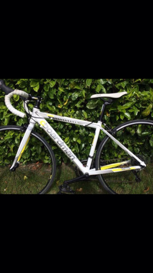Chris Boardman Sport/e Roadbike Boardman sport/e road Aluminium Framed, 700c wheel 7 speed freewheel