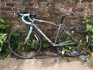 specialized dolce sport ROAD RACER