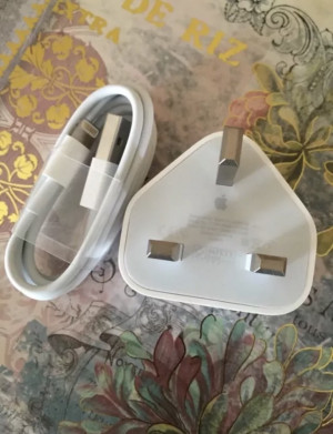 Apple plug and cable charger
