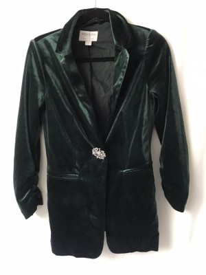 Elegant Monsoon Velvet Blazer