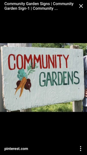 Donations Wanted for New Community Garden Project
