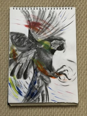 A3 charcoal and acrylic painting of a macaw parrot