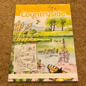 Countryside (Colouring Scenes) by Parragon Books Ltd Pull Out Pages Bo