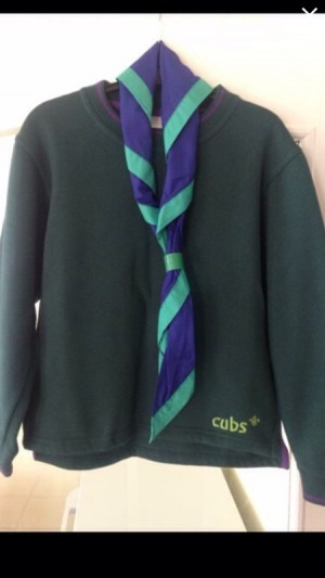 cubs scout jumper and tie