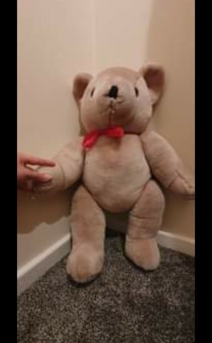 Larhe Teddy Bear movable legs and hands