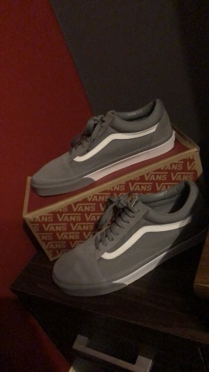 Vans in grey size 9 brand new !