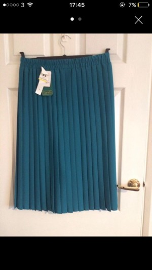 NEED GONE! ladies skirt