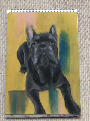 A3 soft pastel blue french bulldog
