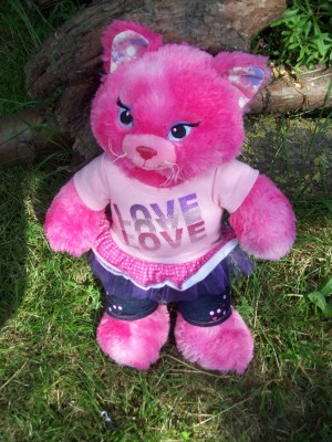 Build A Bear Pink Pussy Cat.