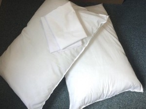 2 pillows and cases. Never used