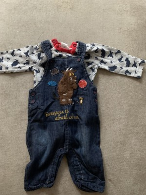 Gruffalo Outfit 0-3 Months