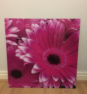 Floral frame rarely used good condition