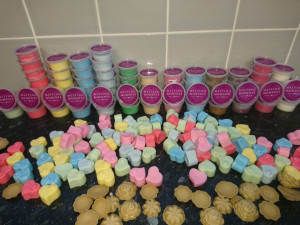 Wax melts & burner