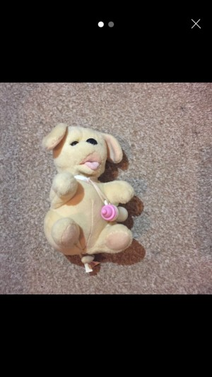 Brand new soft toy talking dog