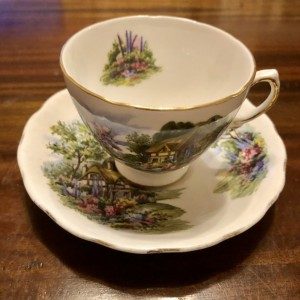 Royal Vale Bone China Cup & Saucer Country Cottage Floral Scene Ridgwa