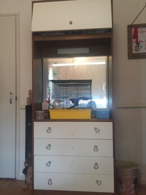 Drawers with a mirror NEED GONE TODAY