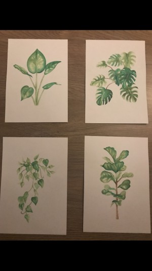 4 Watercoloured Leaf Images