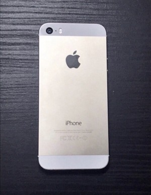 iPhone 5s  (Read description x)