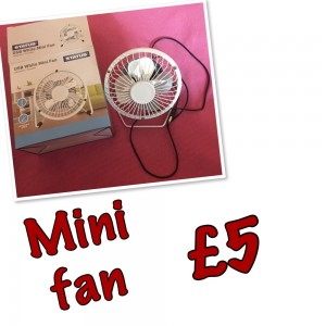 Mini fan and playboy picture