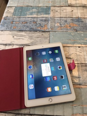 IPad Air 2  16gb plus 4g unlocked £250